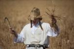 Pilgrim Festival of Shavuot