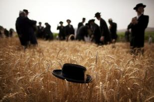 Shavuot Hat