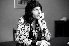 Freddie Sitting